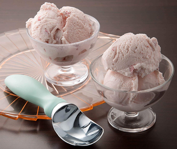 spring chef ice cream scoop