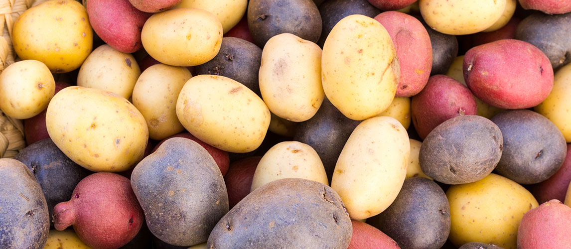Potato Types and Uses