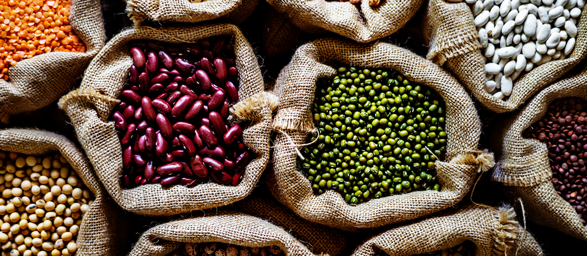 common bean types to cook with