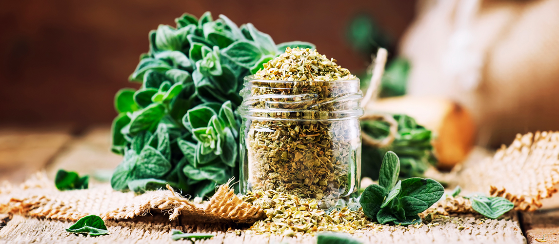 when to use fresh herbs vs dried herbs