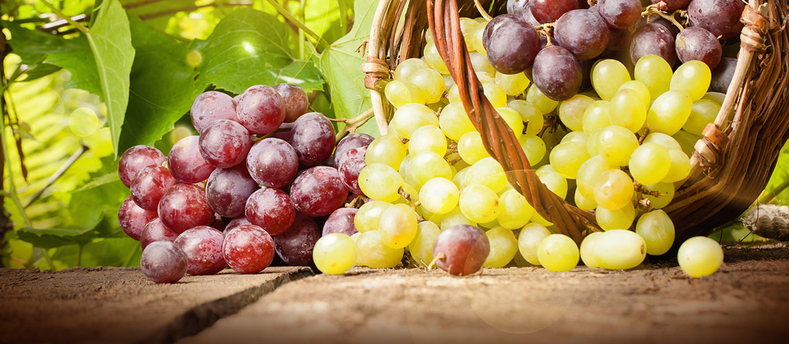 Red Grapes vs Green Grapes: What is the Difference