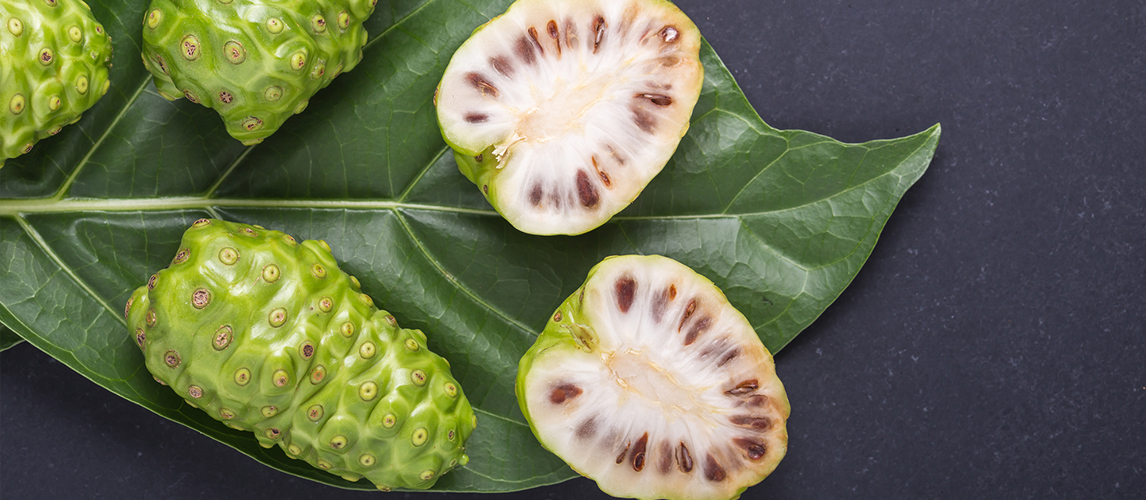 what is noni uses and benefits