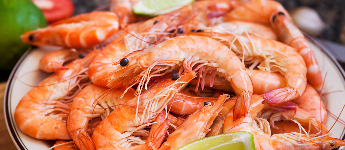 what is the difference between shrimp and prawns