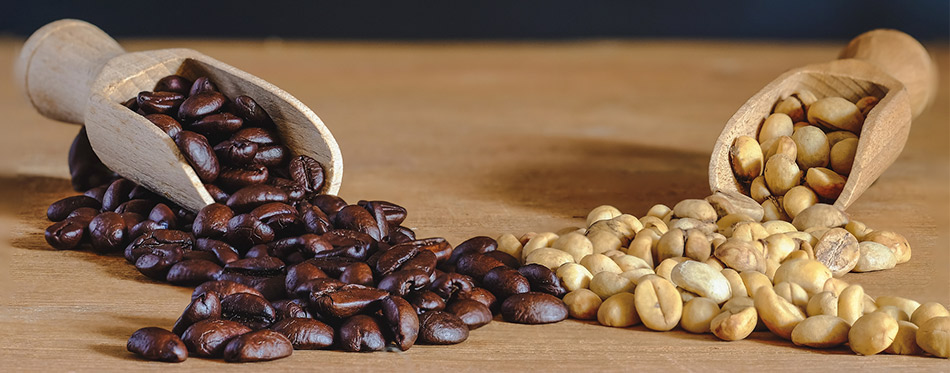 Raw coffee bean-and roasters coffee