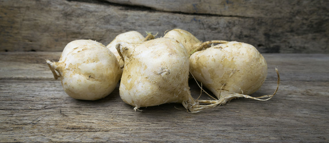 What is Jicama: Nutrition, Taste and Uses