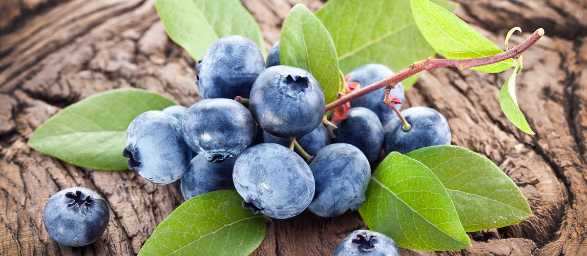 How to Store Blueberries the Right Way