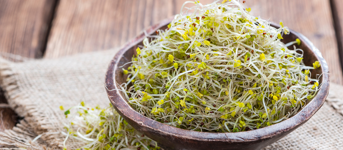broccoli sprouts nutrition facts and benefits
