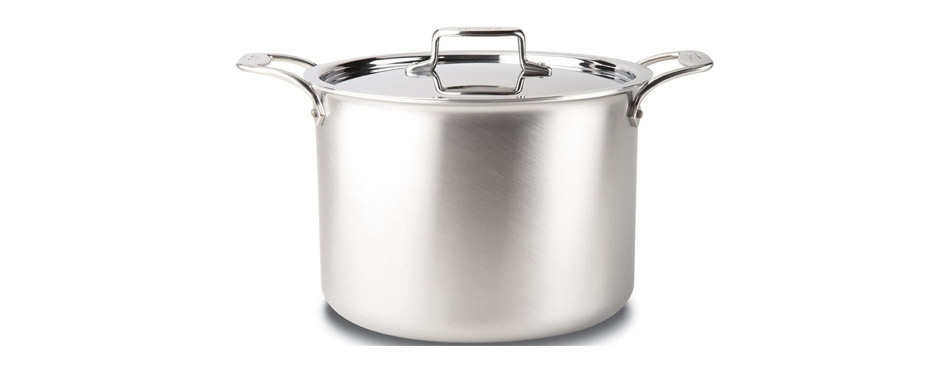 All-Clad Brushed Stainless Steel Cooking Pot