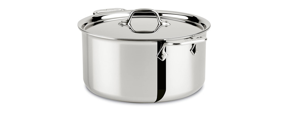 All-Clad Stainless Steel Tri Stock Pot